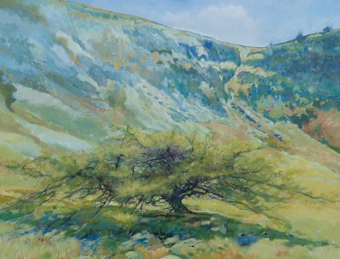 "Cwm Cerrig Gleision - 28 x 36 """